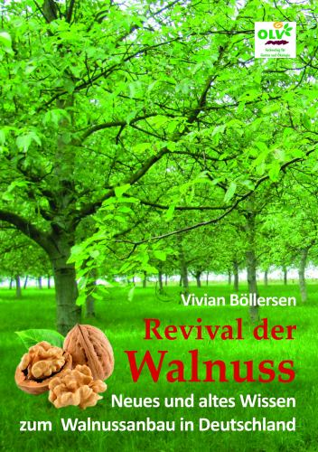 Revival der Walnuss